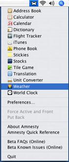 Page Capture un Widget para capturar imágenes de páginas web 2