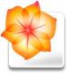 Como crear un icono de iPod con Illustrator 1