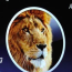 Video oficial de la WWDC 2011 disponible en Apple 10