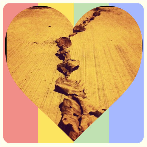 El complemento perfecto para Instagram este 14 de febrero: Lovestagram 3