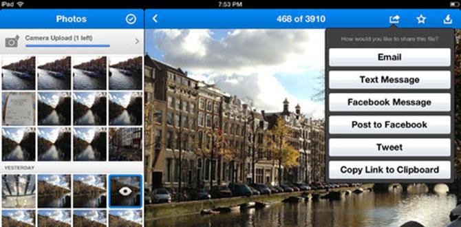 Twitter para iPhone con efectos para tus fotografías 5